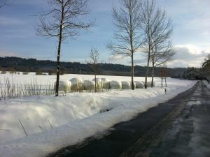 anita_breuer_winter_069