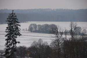 klingelsflos_20130119_volker-berg_020